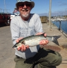 Nigel's fish caught in ireland_1